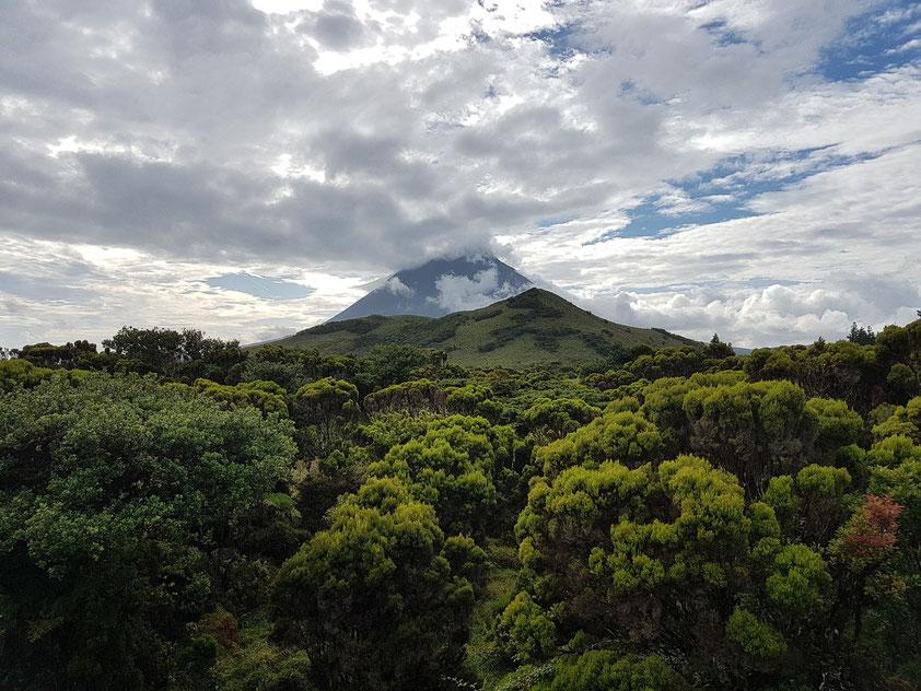 Blick nach Westen auf den Pico (Einmündung der schnurgeraden Höhenstraße EN3 auf die EN2)