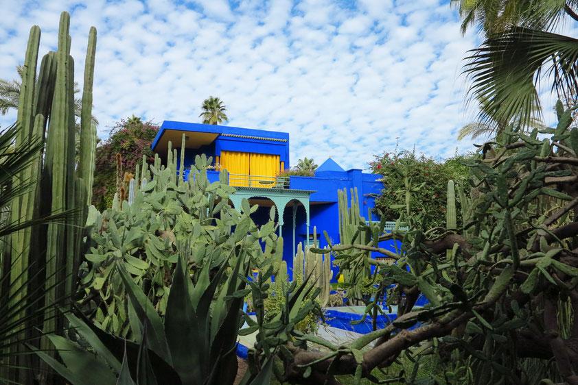 Im Jardin Majorelle. Nachdem sich der französische Maler Jacques Majorelle im Jahr 1919 im damals noch französisch besetzten Marokko niedergelassen hatte, legte er 1923 auch einen Garten an.