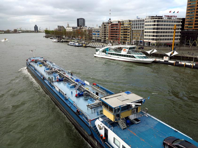 Blick von der Erasmusbrücke nach Westen auf die Nieuwe Maas und die Bebauung an der Willemskade