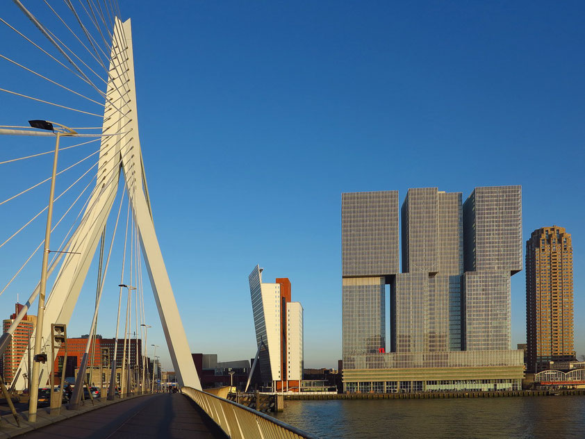 Erasmusbrücke über die Nieuwe Maas, KPN-Tower, De Rotterdam