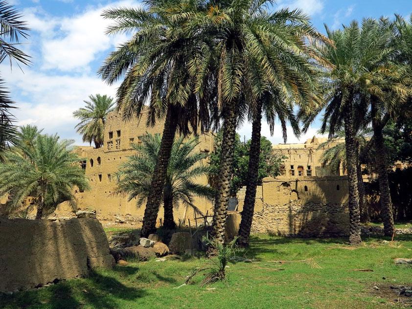 Lehmhäuser von Al Hamra am Rand der Palmenoase
