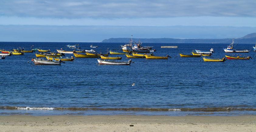 Bucht von Guanaqueros