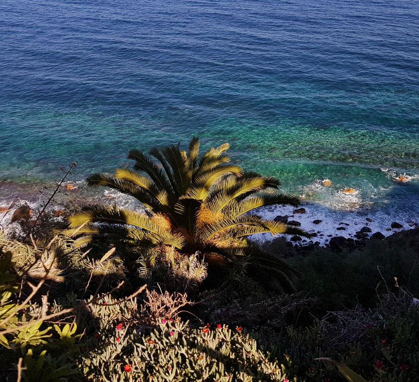 El Rosario, Blick vom Küstenweg hinunter zum Meer
