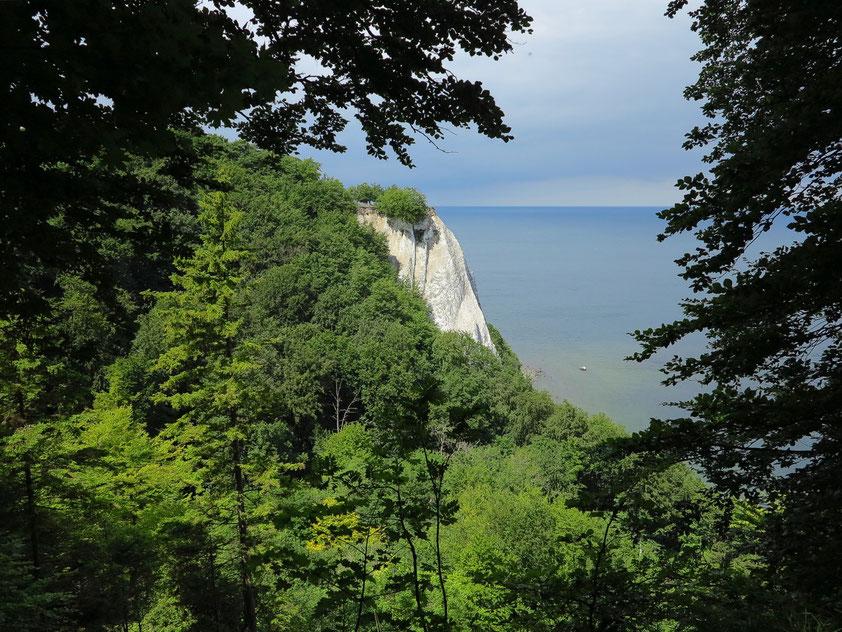Der markanteste Punkt des Nationalparks ist der 118 Meter hohe Kreidefelsen Königsstuhl. Blick von der Viktoriasicht