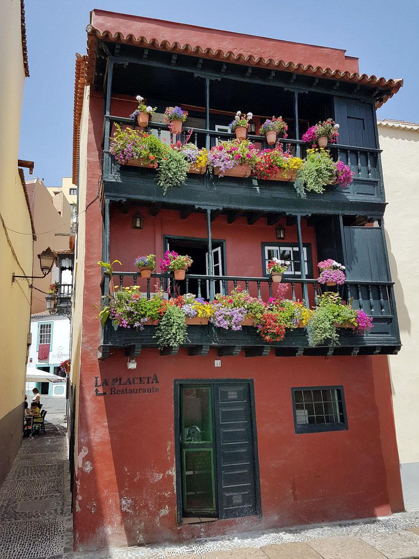 "Heiko Bartsch, ""El Chico de los Balcones"", ist verantwortlich als Garten- und Balkondesigner auf La Palma"
