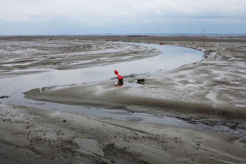 Fahrrinne im Watt bei Niedrigwasser, Begrenzung durch Tonnen und Pricken