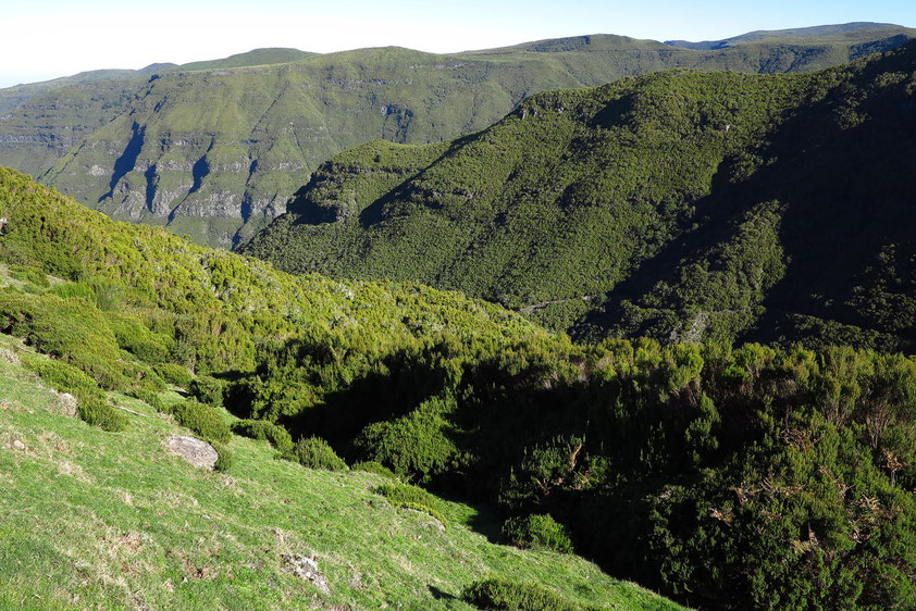 Talung von Rabacal im Parque Natural da Madeira