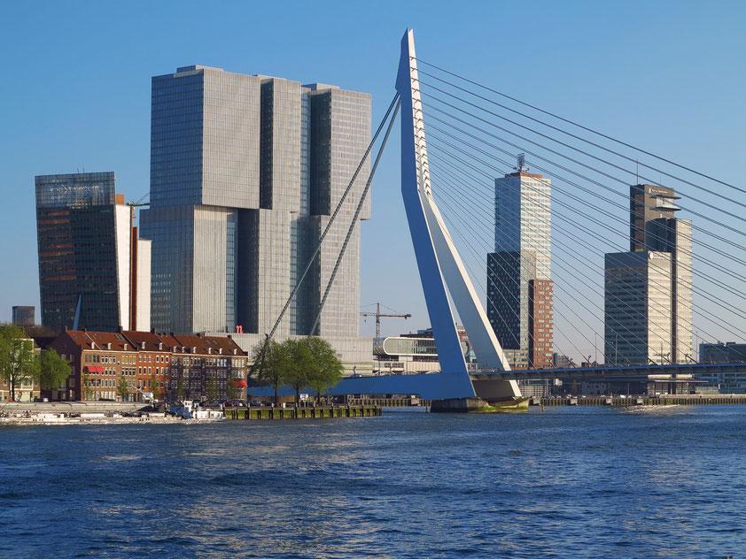 """Nieuwe Maas und Kop van Zuid (""""Manhattan von Rotterdam"""") - KPN-Tower, De Rotterdam, Erasmusbrücke, Montevideo, World Port Center (v.l.n.r.)"""