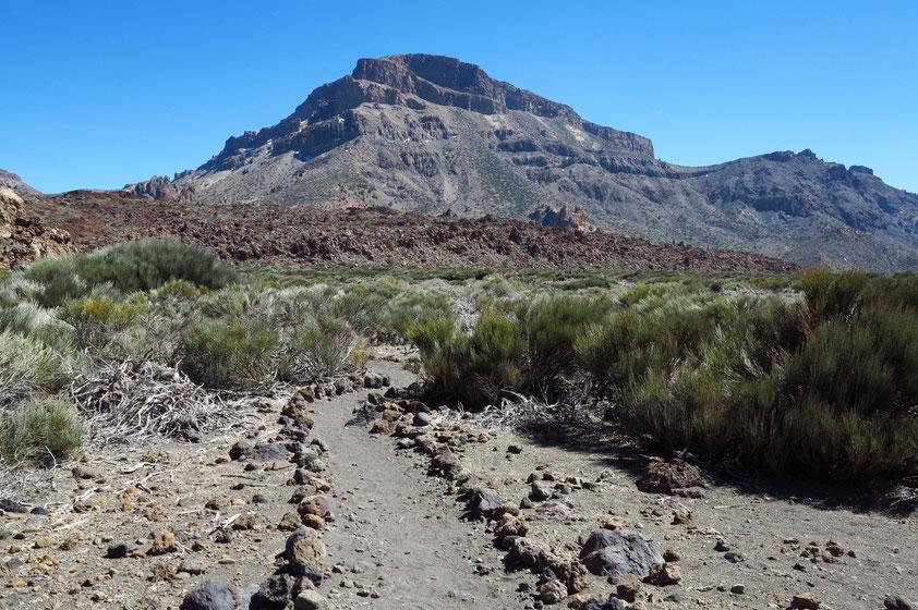 Wanderweg Nr. 19 in den Canadas, im Hintergrund der Guajara, 2 718 m
