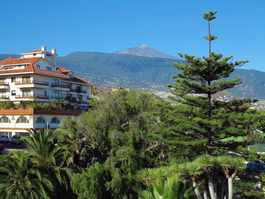 Teneriffa, Puerto de la Cruz. Blick vom Apartmenthaus Coral Teide Mar zum Pico del Teide (3715 m)