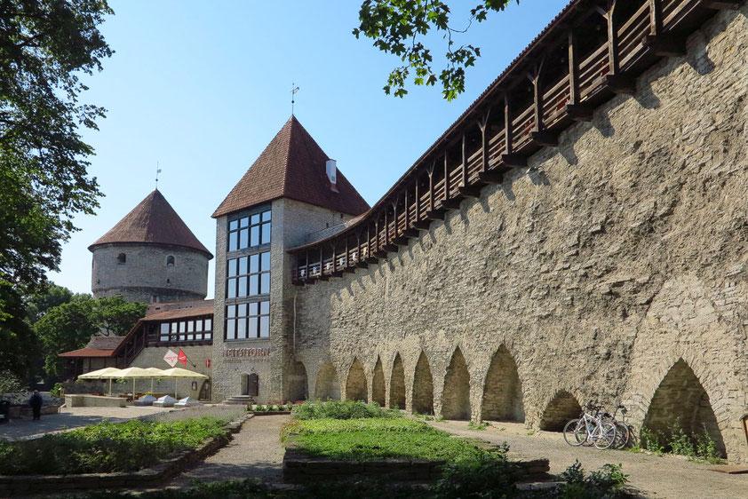 """Stadtmauer und Kanonenturm """"Kiek in de Kök"""" (1370 - 1373) am Südostende der Oberstadt"""