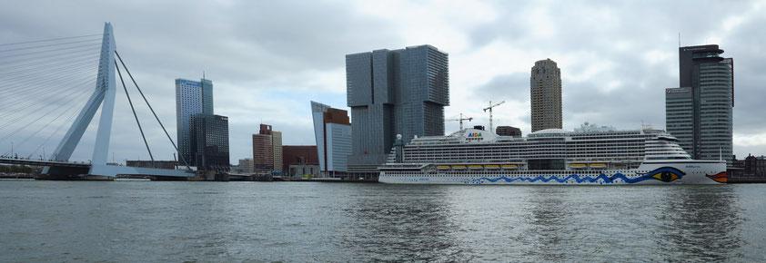 Panorama-Foto von Kop van Zuid, Rotterdam, mit Kreuzfahrtschiff AIDAprima