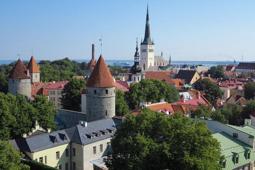 Tallinn. Blick vom Domberg auf Stadtmauer und Olaikirche