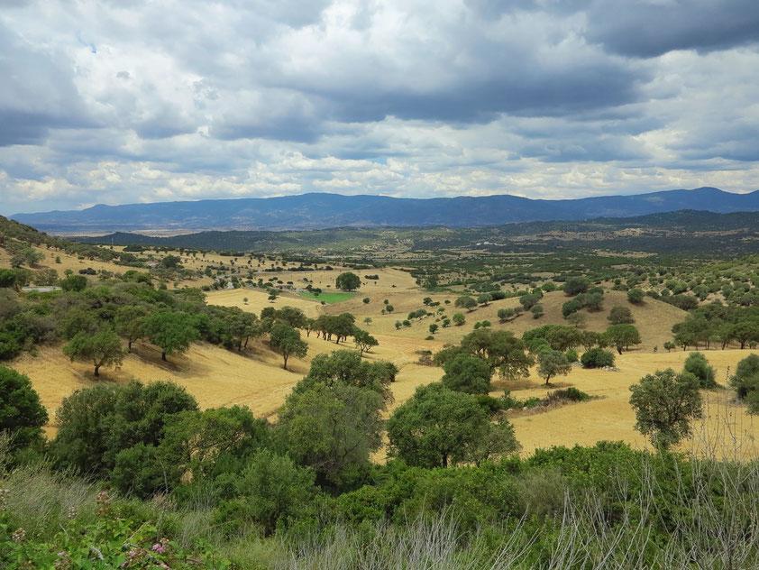 Landschaft bei Orani