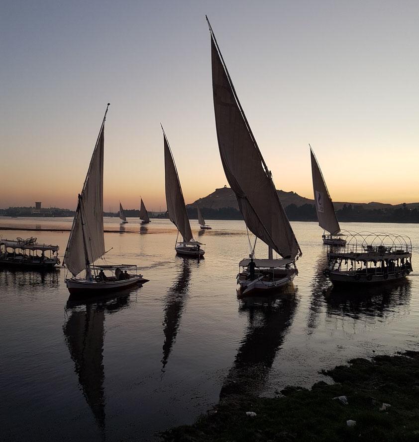 Feluken auf dem Nil bei Assuan