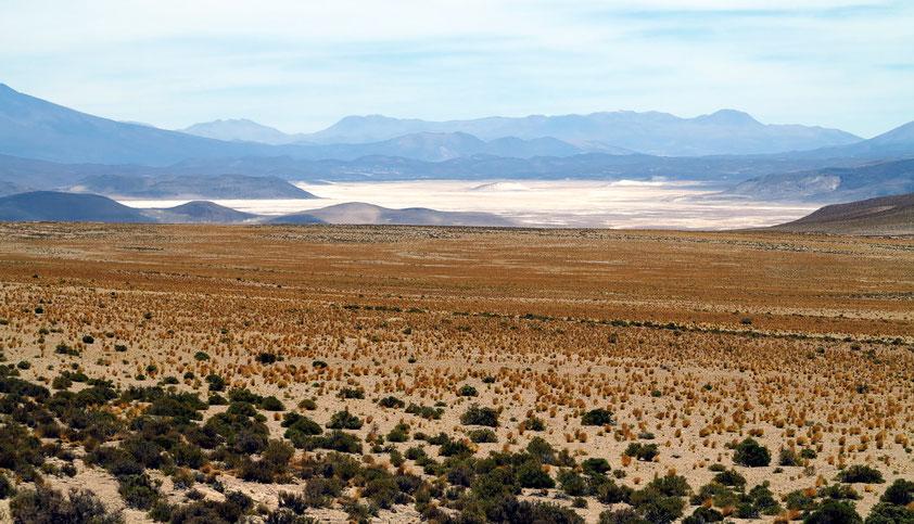 Salzpfanne nördlich des Vulkans Ollagüe