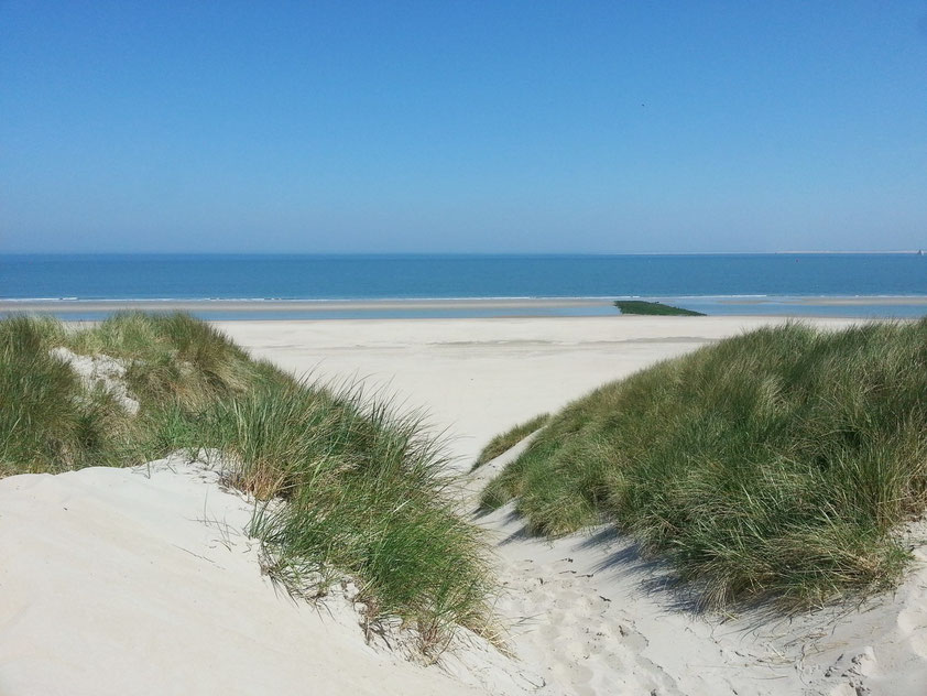 Nordstrand von Vlieland in der Nähe des Campingplatzes