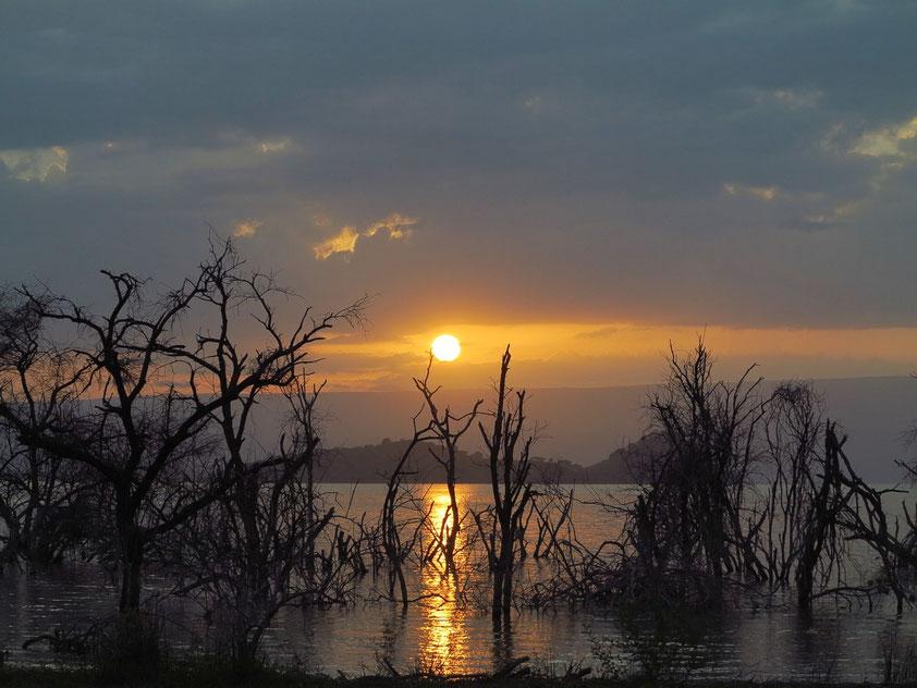 Sonnenaufgang am Baringosee