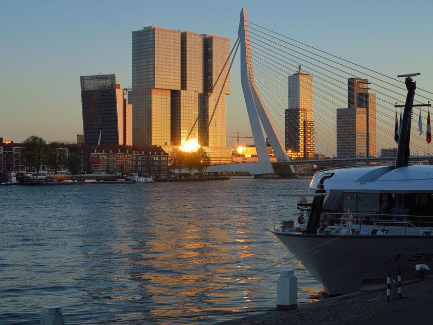 Die untergehende Sonne spiegelt sich im Hochhaus De Rotterdam. Blick vom nördlichen Ufer der Nieuwe Maas