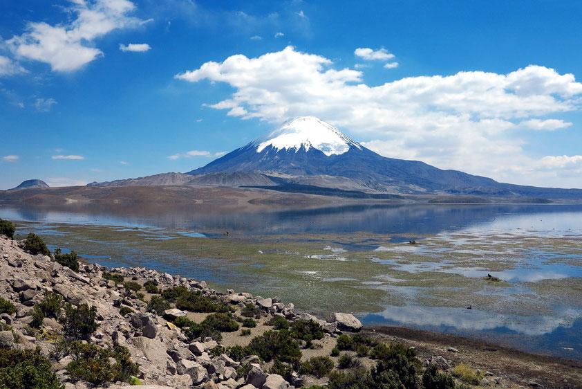 Der Sajama ist der höchste Berg Boliviens und einer der höchsten Vulkane der Welt. Seine Basis steht auf der Hochebene des Altiplano in etwa 4200 m. (???)