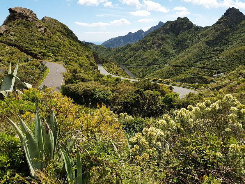 Im Anaga-Gebirge. Straße TF-12 von San Andrés zur Cumbre