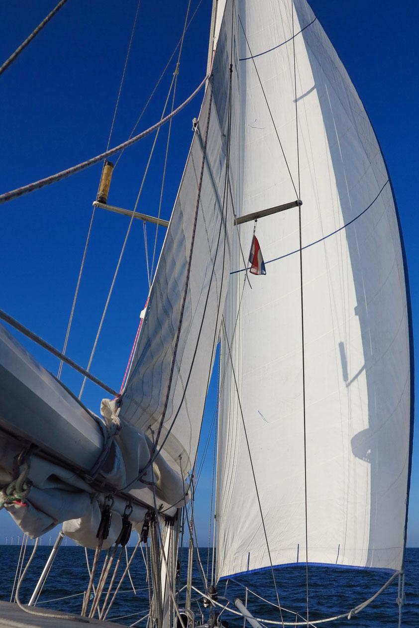 19:43 Mit schwachem raumem Wind auf Kurs nach Osten, Offshore-Windpark bei Borkum