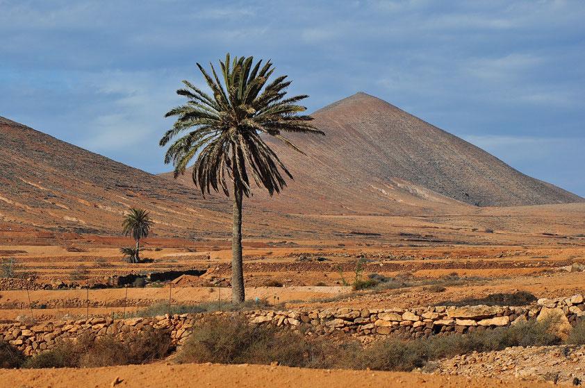 Fuerteventura bei Tetir