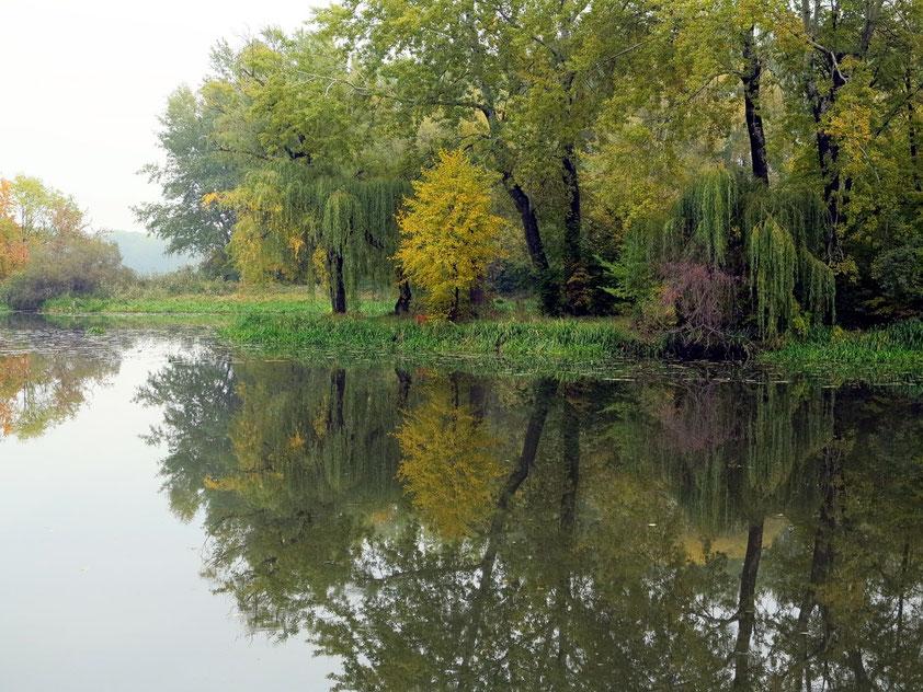Jezioro Wilanowskie. Der Wasserarm (ehemals Flusslauf der Weichsel) ist die östliche Begrenzung des Wilanów-Parks.