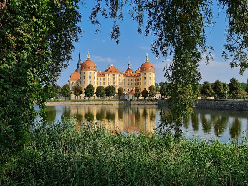 Schloss Moritzburg mit Schlossteich, Blick von Südwesten
