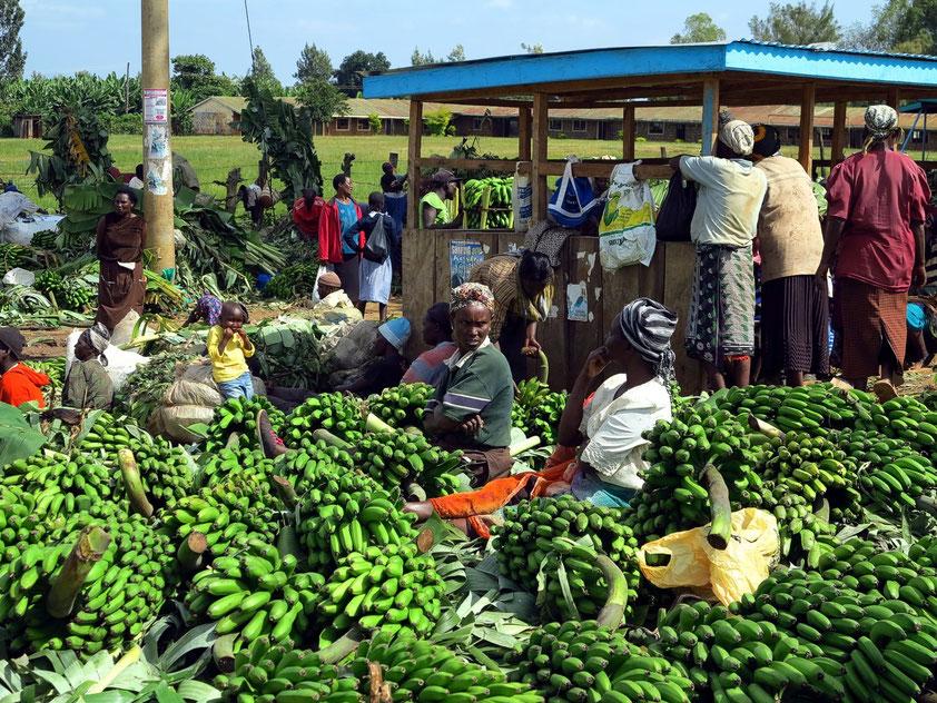 Markt mit Kochbananen