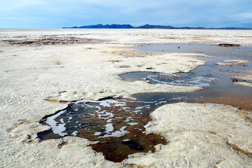 In den schlammigen Uferzonen gibt es einzelne Wasseraugen. Hier treten unterirdische Flüsse zutage.