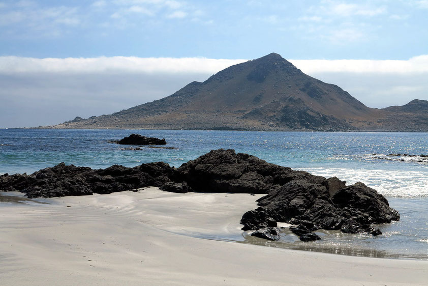 Pan de Azucar Nationalpark, Blick zur vorgelagerten Vogelinsel