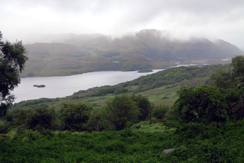 Blick vom Ladie's View auf den Upper Lake im Killarney Nationalpark