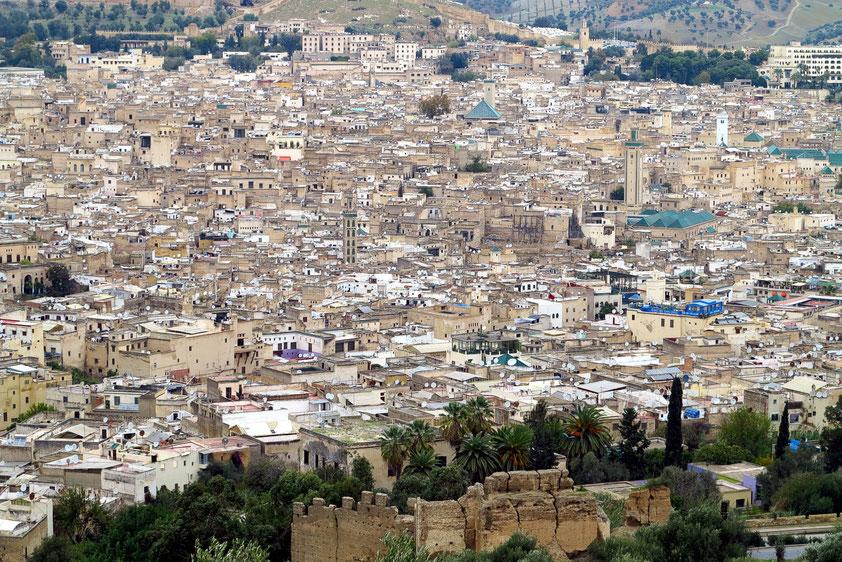 Blick vom Aussichtsberg auf die Medina von Fès