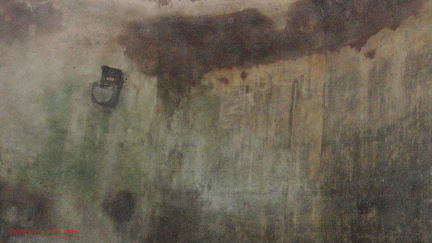 Hier die besagte Wand. Vielleicht erkennt ja jemand ein Gesicht und kanns mir zeigen?^^ #Bitche #paranormal #ghosthunters