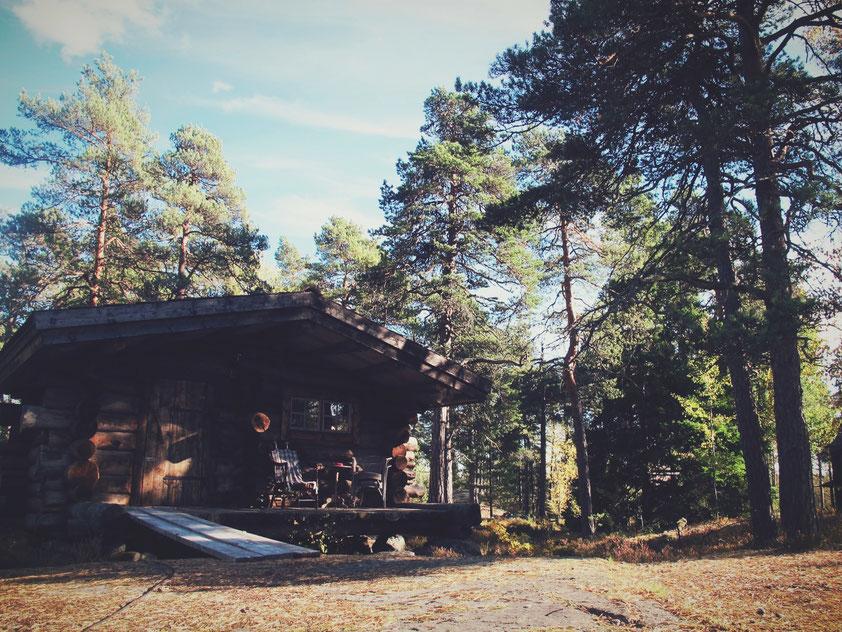 cabane bois forêt ciel bleu arbre suède bigousteppes