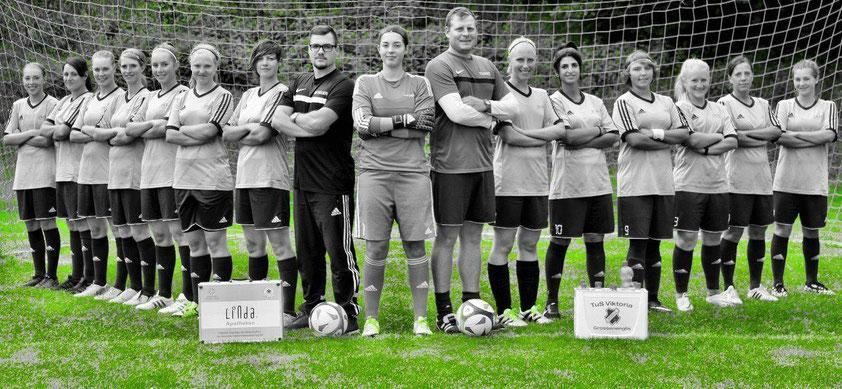 Die Gruppenliga-Mannschaft des TuS Viktoria Großenenglis
