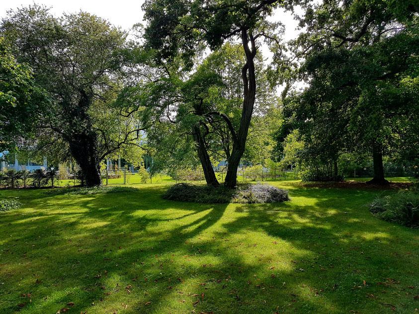 Im Park des Hotels und Restaurants Am Peenetal