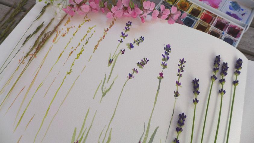 Inspiration - Lavendel und Gräser skizzieren