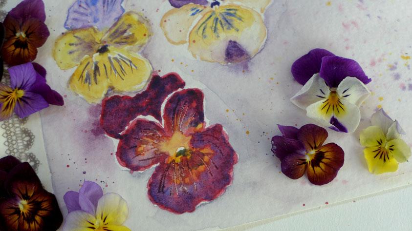 Inspiration - Stiefmütterchen in Aquarell skizzieren - DIY-Projekt