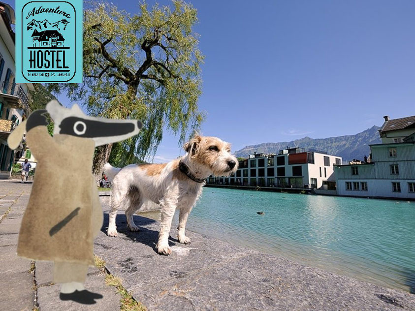 Go on a detective trail treasure hunt with the kids in Interlaken