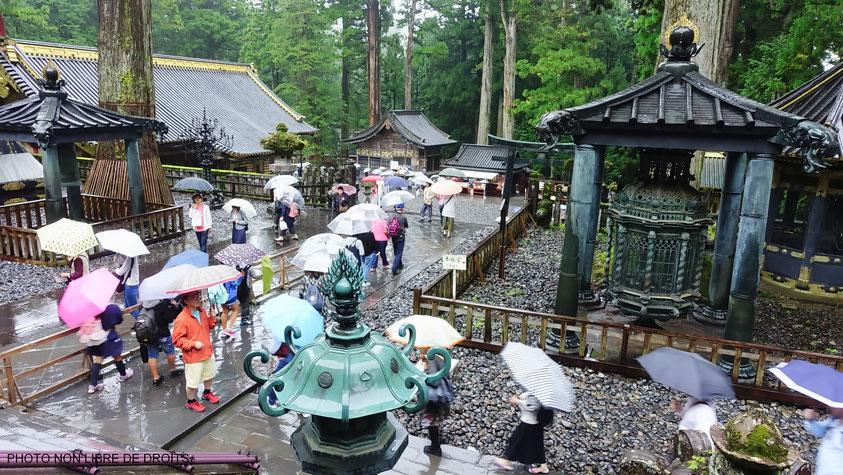 Forêt de parapluie à Tosho Gu, parc de Nikko, photo non libre de droits