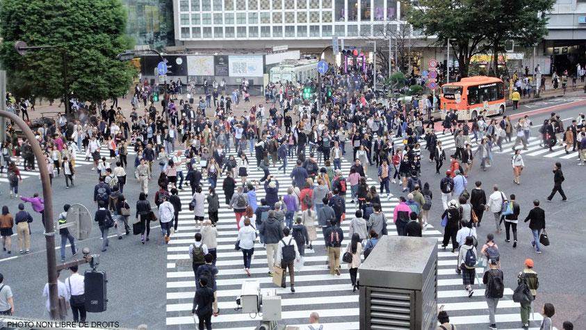 Carrefour de Shibuya, Tokyo, Japon, photo non libre de droits