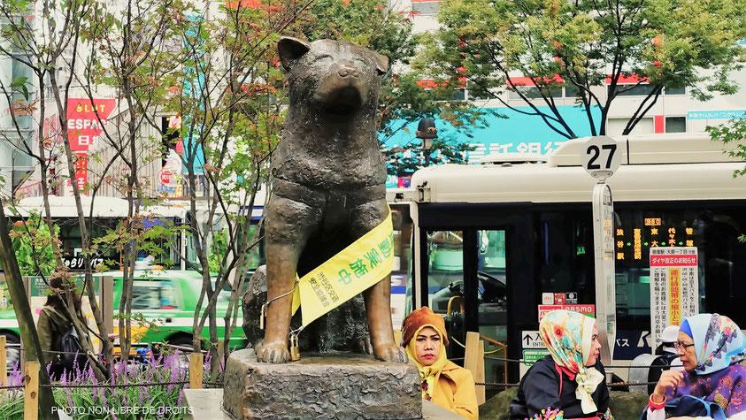 Statue d'Hachikö, chien fidèle, Shibuya, Tokyo, photo non libre de droits
