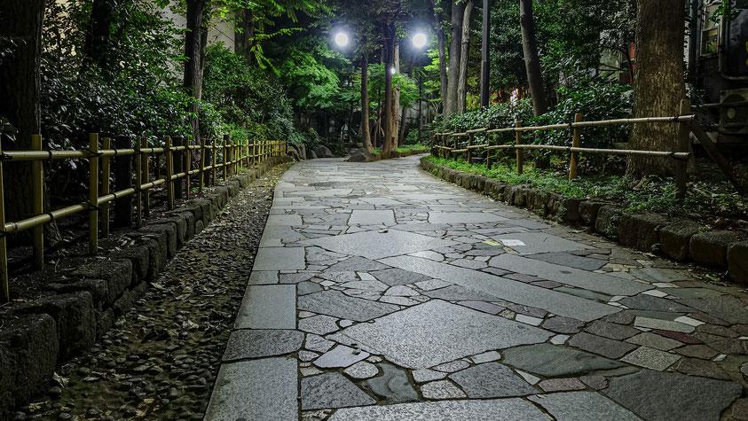 Shiki no Michi Promenade, Golden Gai, Tokyo, photo non libre de droits