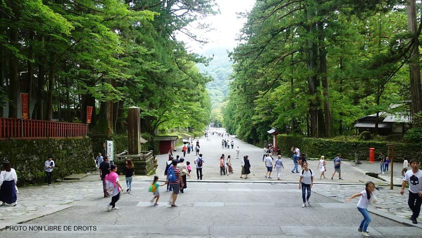 Sennin Ishidan, Nikko Toshogu, Japon, photo non libre de droits