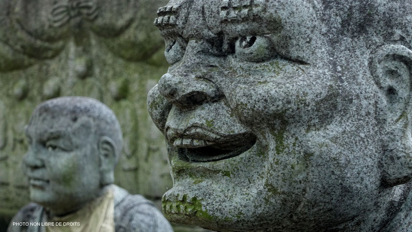 Moine moqueur, Zentsu-Ji, photo non libre de droits