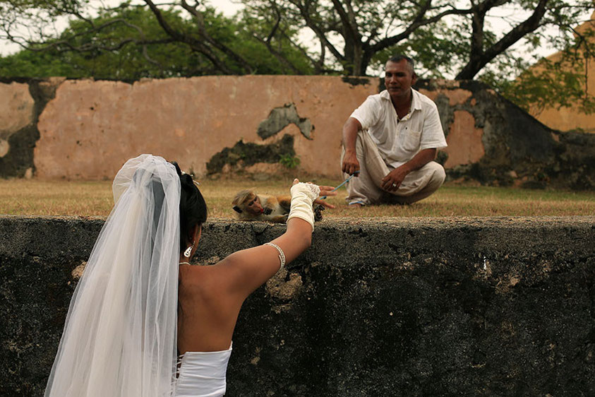 Невеста и обезьянка