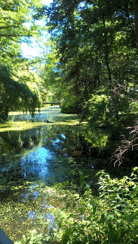 Beatrice Winkel - der magische See