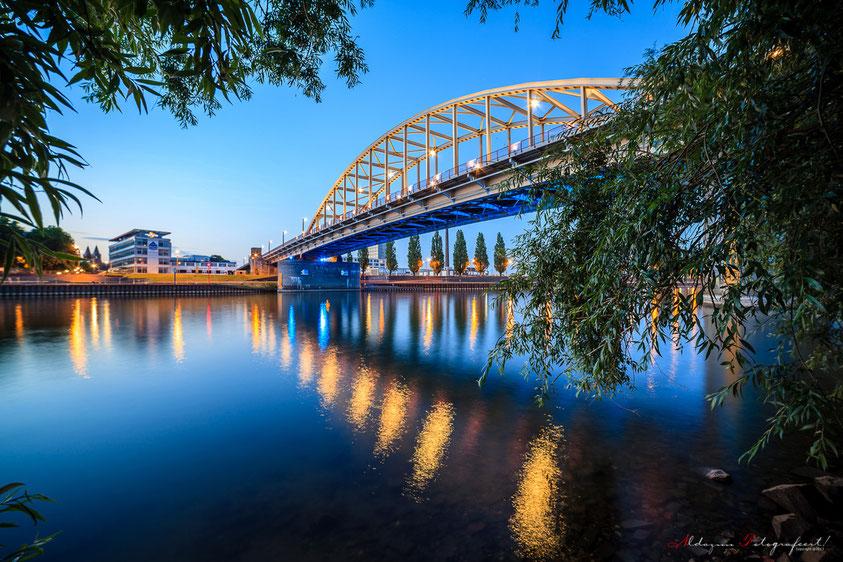 John Forstbrug Arnhem nldazuufotografeert
